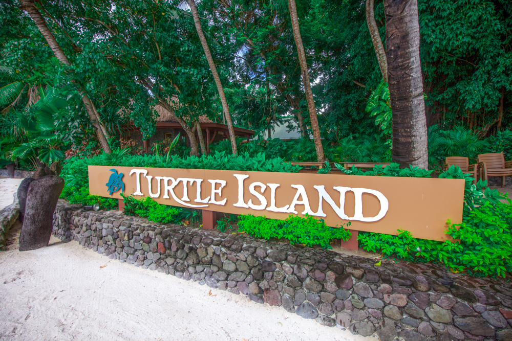 Top 4 All Inclusive Fiji Vacations You Should Try Turtle