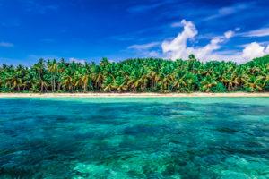 The Beaches of Fiji's Blue Lagoon