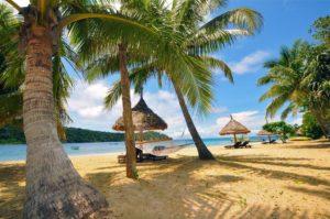 Paradise Cove Fiji