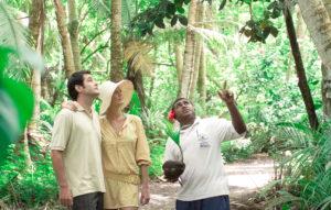 fiji island guide