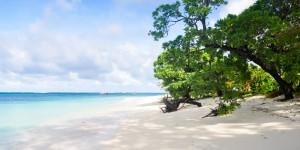 viwa-island-resort-beach