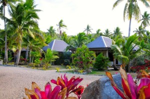 paradise in fiji at paradise cove