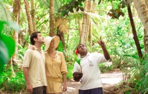 fiji-eco-tour-environment