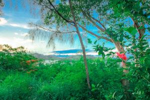 Holidays in Fiji